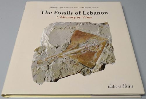 Book Fossils of Lebanon